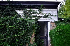 Screen Door (pjpink) Tags: littlewashington washington virginia july 2019 summer pjpink 2catswithcameras abandoned overgrown