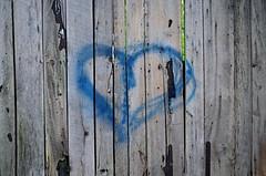 Blue Heart (pjpink) Tags: littlewashington washington virginia july 2019 summer pjpink 2catswithcameras abandoned overgrown heart graffiti