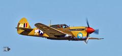 Curtiss P40 Warhawk_12 (coste.jl) Tags: curtiss p40 warhawk curtissp40warhawk