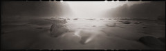 Morning on the River (DRCPhoto) Tags: zeroimage618 pinhole lenslessphotography kodakbw400cn 120film panoramic albright prestoncounty cheatriver westvirginia