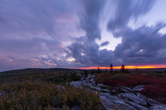 Evening Over the Dolly Sods (Ken Krach Photography) Tags: westvirginia