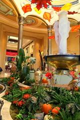 Las Vegas Strip - The Venetian (wyliepoon) Tags: las vegas boulevard strip venice hotel paradise nevada casino resort venetian