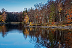 Autumn Reflection II (Adrian Siebert) Tags: herbst spiegelung harz bremer teich