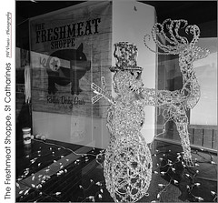 The Feshmeat Shoppe (jwvraets) Tags: stcatharines shop reindeer illuminated rollerderby blackandwhite monochrome bw square opensource gimp nikon d7100 nikkor1224mm