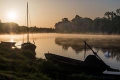 Le matin sur la Loire (françoispeyne) Tags: enfrance loire paysdeloire phbody bateau contrejour envoyage chouzésurloire centrevaldeloire france simplysuperb