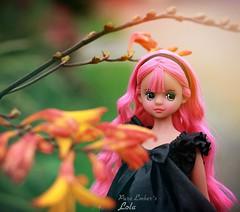 Lola (pure_embers) Tags: pure embers doll dolls uk pureembers photography laura england fashion atomaru dorandoran doran cute portrait korean pink black lola tan colourful bright flowers vinyl plastic