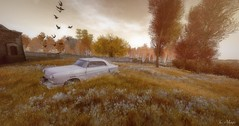 Another Moment of Simplicity (Loegan Magic) Tags: secondlife landscape automobile auto car trees grass flowers birds