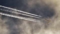 Etihad Airways / Airbus A380-861 / A6-APF (Micha_87) Tags: etihad etihadairways etihadcrew abudhabi auh omaa jfk kjfk newyork newyorkcity jfkairport jfkairportnewyork aircraft airplane plane avgeek aviationgeek contrails contrailspotter uae ey etd airbus a380 airbusa380 airbusa380800 airbusa380861 jena jenaparadies clouds cloudy cloudyweather aviationpics aviationpictures aviation planepics planepictures airplanepictures airplanepics ey101 etihada380