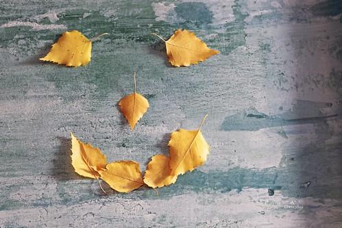 smiling leaves