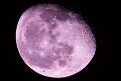 Moon (vishal anand) Tags: moon california canon nature sky night celestron c8