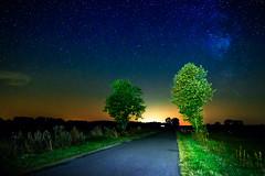 Milky Way (Andrzej Kocot) Tags: andrzejkocot art adventure sky surreallandscape mzuiko fineart forest