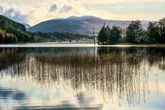 Early winter on Loch Pityoulish (judmac1) Tags: loch lake water snow mountains weather calm peaceful scotland highlands reeds