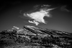 Warning Cloud (Graeme O'Rourke) Tags: lrcf2l1041v4 cloud white sky bw blackandwhite black fun blackwhite trees sand bushes rockformation clouds blue outside breathtakinglandscapes