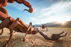 Sunset Showdown (bluegreenorange) Tags: california artinstallation art galletameadows grasshopper roadside ricardobreceda sunset borregosprings scorpion unitedstatesofamerica