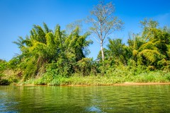 On the river Kwae Noi in Kanachaburi province, Thailand (UweBKK (α 77 on )) Tags: sony alpha 550 dslr thailand southeast asia kanchanaburi river stream flow water kwae kwai noi kwaenoi tree bush forest jungle outdoors nature