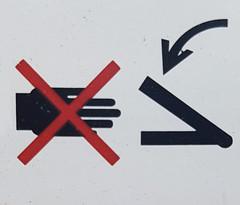 Do Not Staple Hand (Bracus Triticum) Tags: do not staple hand アルバータ州 alberta canada カナダ 8月 八月 葉月 hachigatsu hazuki leafmonth 2019 reiwa summer august