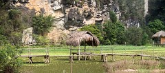 Techo de paja (rraass70) Tags: canon d700 rio agua ninbinh deltadelriorojo vietnam paisajes