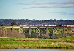 SCT001+CF4403+CSR001+CSR011+SCT013 with Perth to Melbourne SCT freight #5PM9 crossing the Moorabool River viaduct at Moorabool, Vic (Amateur-Hour Photography) Tags: train trenes trains diesel diesels locomotive locomotives railroad railways railway freighttrain australianrailways australiantrains victorianrailways sct sctlogistcs sctclass specialisedcontainertransport bridge railbridge viaduct d610 nikond610 nikon mynikonlife