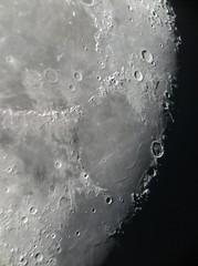 Lunar Closeup, November 16, 2019 (FailedProtostar) Tags: moon celestron telescope iphone
