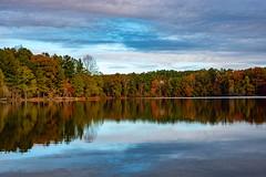 November (Emi Dragoi) Tags: gwinnett gwinnettcounty november georgia ga lake water reflection autumn colors color