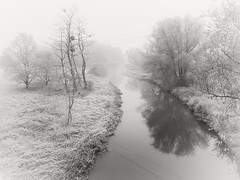 Klodnica River (wojciechpolewski) Tags: schwarzweis landscape klodnicariver river fog foggyweather morning blackandwhite blackwhite blanconegro photos photo poland wpolewski nature frost frozenday