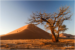 Postcard Greetings From Sossusvlei (RudyMareelPhotography) Tags: africa deadvlei jimmynelson karasregion namibnaukluftnationalpark namibia natgeotravel rudymareelphotography sossusvlei ngc travel travelphotography wanderlust hardapregion flickrclickx flickr