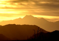 Golden sunset (thomasgorman1) Tags: desert baja sun golden mountains landscape mexico sky clouds sundown