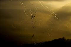 金龍山 (Sean黃) Tags: 金龍山 canon canon5dii 5dmarkii 5d2 tamron 南投 埔里 台灣 taiwan canon1740 tamron150600 nature picture photographer photograph sunrise nantou photo photoshop