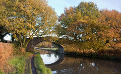 Bridgewater canal Walton 02 nov 19 (Shaun the grime lover) Tags: autumn bridge reflection water bridgewater canal cheshire walton moore trees leaves
