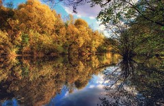 autumn reflection (Slávka K) Tags: autumn lake colors slovakia water sky trees leaves gold mirror reflection europe 2019 november sunny moretrees forest