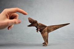 Tyrannosaurus Rex - Jun Maekawa (pierreyvesgallard) Tags: tyrannosaurus tyrannosaur trex jun maekawa origami paper papercraft dinosaur animal pet hand