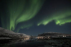 BA0I0554 (Clare Forster) Tags: tromso norway arctic winter november 2019 aurora aurorahunting northern lights