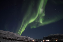BA0I0516 (Clare Forster) Tags: tromso norway arctic winter november 2019 aurora aurorahunting northern lights
