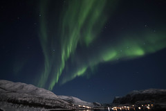 BA0I0500 (Clare Forster) Tags: tromso norway arctic winter november 2019 aurora aurorahunting northern lights
