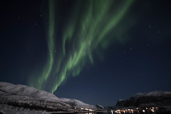 BA0I0481 (Clare Forster) Tags: tromso norway arctic winter november 2019 aurora aurorahunting northern lights