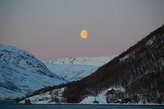 BA0I0171 (Clare Forster) Tags: tromso norway arctic winter november 2019 aurora