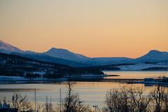 BA0I0117 (Clare Forster) Tags: tromso norway arctic winter november 2019 aurora