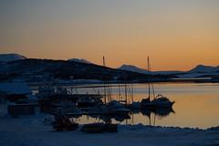 BA0I0071 (Clare Forster) Tags: tromso norway arctic winter november 2019 aurora