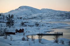 BA0I9890 (Clare Forster) Tags: tromso norway arctic winter november 2019 aurora