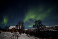 BA0I9760 (Clare Forster) Tags: tromso norway arctic winter november 2019 aurora aurorahunting northern lights