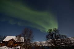 BA0I9582 (Clare Forster) Tags: tromso norway arctic winter november 2019 aurora aurorahunting northern lights