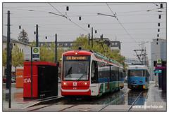Tram Chemnitz - 2019-13 (olherfoto) Tags: bahn triebwagen chemnitz citylink tram tramcar tramway villamos strassenbahn strasenbahn cvag citybahn
