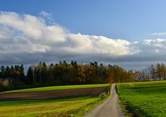Autumn landscape (ceca67) Tags: autumn switzerland landscape nature walk day outdoors