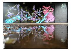 LONDON STREET ART by SIDOK & TAMOONZ (StockCarPete) Tags: sidok tamoonz streetart londonstreetart urbanart graffiti londongraffiti shoreditch shoreditchart london uk puddledouble reflection puddle peckham