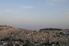 P1040657 (jasonpittock) Tags: israel telaviv jersualem