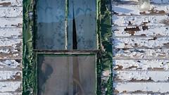 Jelly Jar (jtr27) Tags: dscf0801xl jtr27 vacation tourist cottage motorcourt newhampshire nh newengland peelingpaint jellyjarlight