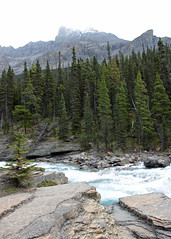 Into Misty Mountains (JB by the Sea) Tags: banff banffnationalpark alberta canada september2019 rockymountains rockies canadianrockies icefieldsparkway highway93 mistayacanyon mistayariver