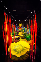 Chihuly Garden and Glass - Seattle, WA (Bela Lindtner) Tags: seattle washington unitedstatesofamerica lindtnerbéla belalindtner nikon d7100 nikond7100 nikkor 1020mm nikkor1020mm nikon1020mm indoor inside colours art glass chihulygardenandglass usa