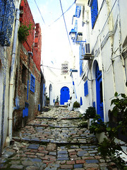 sidi bou said (SimplyHorses) Tags: tunez tunisia travel viajes cat blue gato azul puerta colors colores orange naranja