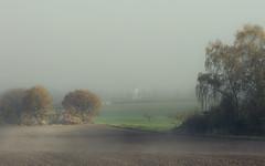 Sunny Fog (Netsrak) Tags: baum bäume eu eifel europa europe forst landschaft natur nebel fog landscape mist nature kirche church herbst autumn fall